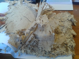 Estado de conservación de algunos protocolos notariales. Archivo General Insular de La Palma. Septiembre de 2013.